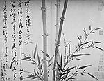 bamboo_wuchen1.jpg