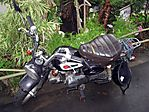 motorbike-093006-08.jpg
