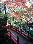 Tokyo_Garden.jpg