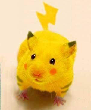 Pikachu_cosplay