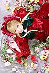 rosen_maiden.jpg