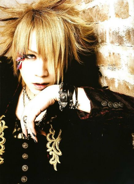 the GazettE Ruki208