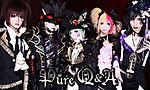 Pure_Q_A4.jpg