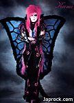 kami_Butterfly.jpg
