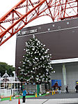 Tokyo-Tower-Christmas-2006-01.jpg