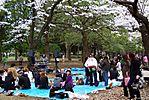 Cherry-Blossoms-2007-Yoyogi-Park-Tokyo-033.jpg