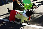 Harajuku-Pumpkin-Parade-2007-085.jpg